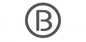 Logo Borstkankervereniging Nederland